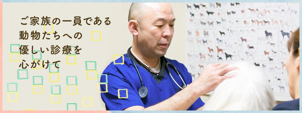鹿児島市谷山にある動物病院です。 鹿児島銀行和田出張所隣になります。 駐車場3台完備しています。