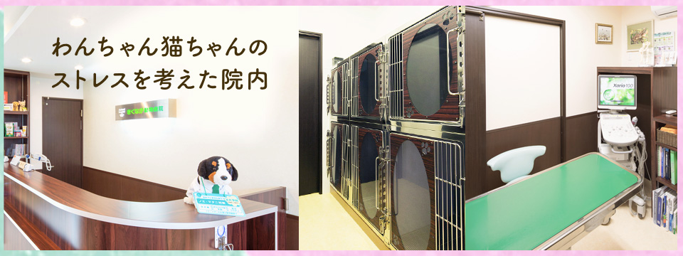 わんちゃん・猫ちゃんのストレスを考え、 待合室・診察室・入院室・ペットホテルを 別々にしています。