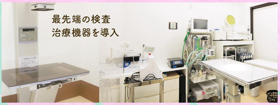 最先端の検査・治療機器を導入 飼い主様も院内をご覧頂けます