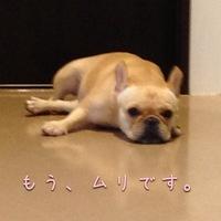 IMG_5300.JPG