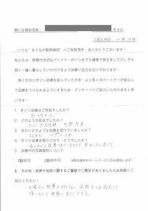 Questionnaire03.jpg