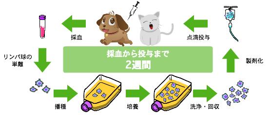 kikunaga09_02.jpg