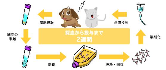 kikunaga09_03.jpg